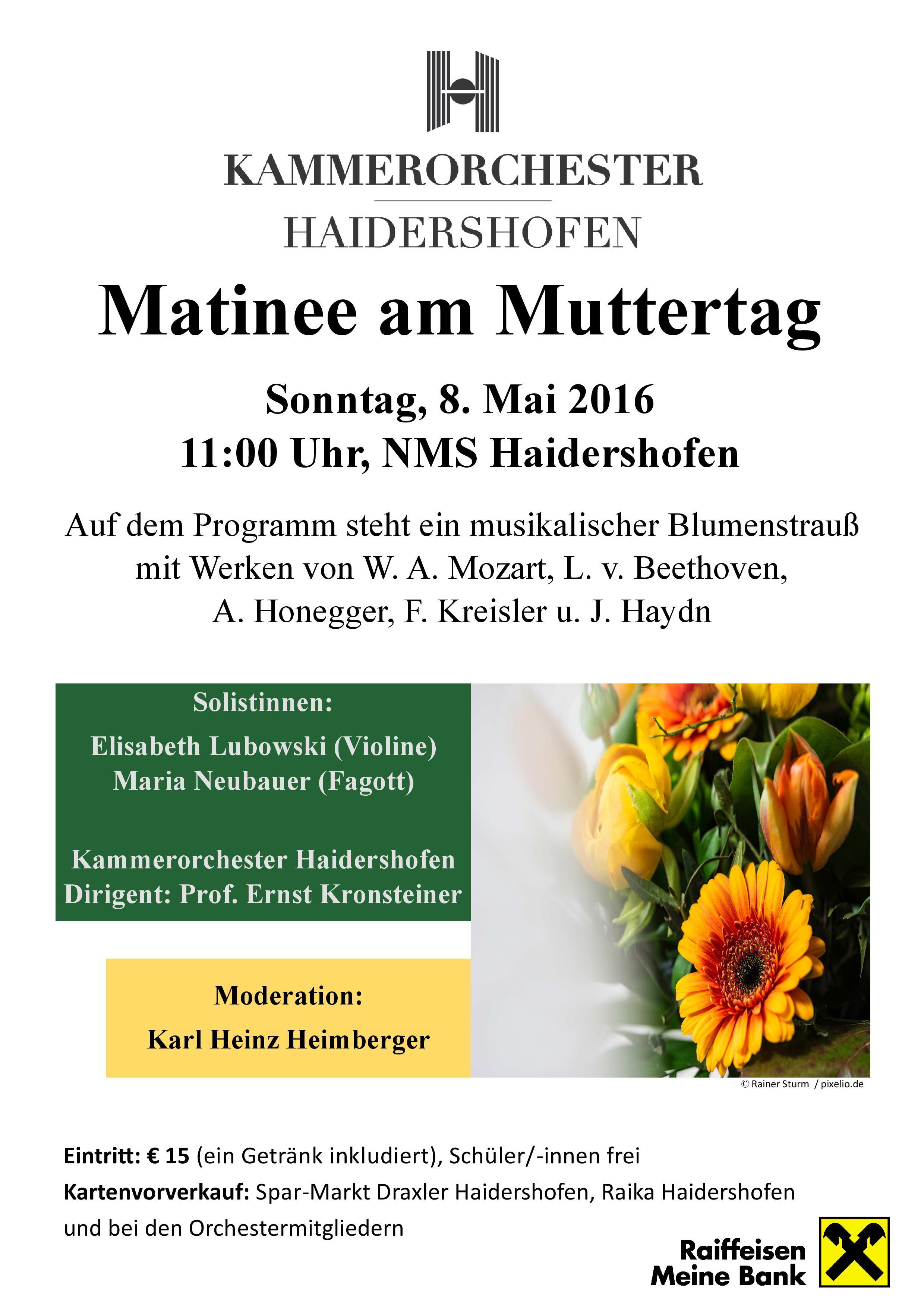 Plakat_Matinee_2016_Kammerorchester-Haidershofen-page-001